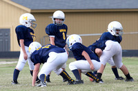 Wolverines v. Falcons